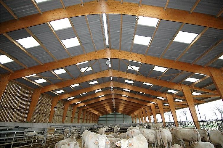 Plaque polyester en fibre de verre bâtiment agricole